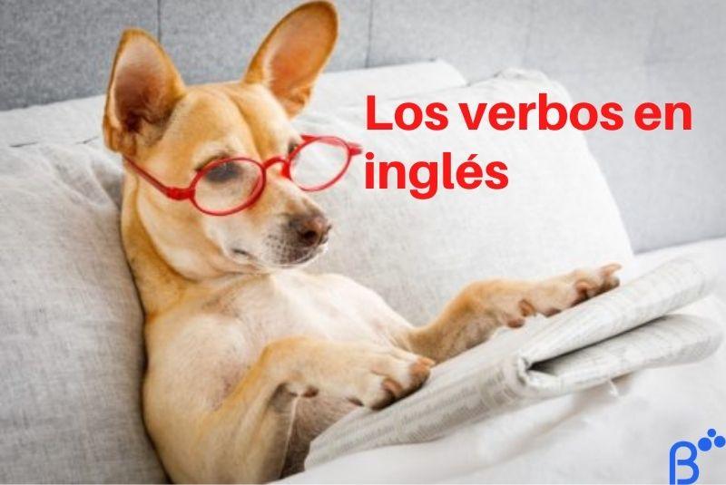 ¿Cómo funcionan los verbos en inglés?